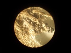 Tela de lino vista a través de un microscopio
